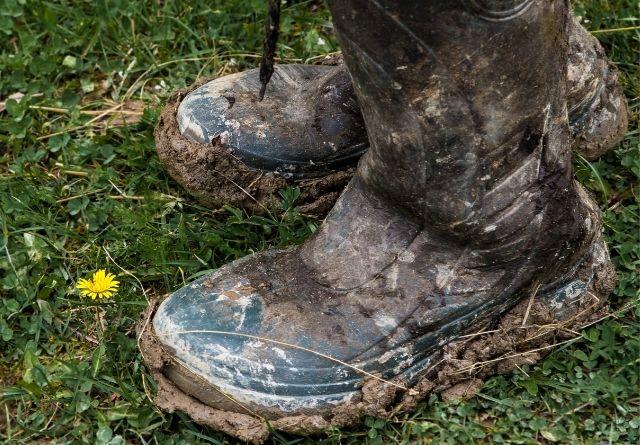Calzado profesional para el campo