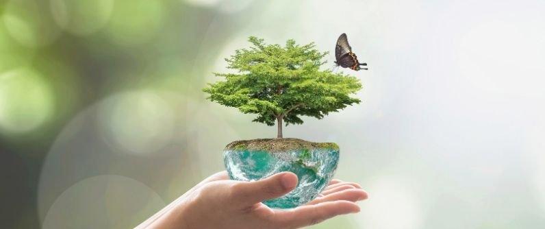 Desempeño Ambiental anualidad